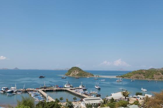 ----- Harbour