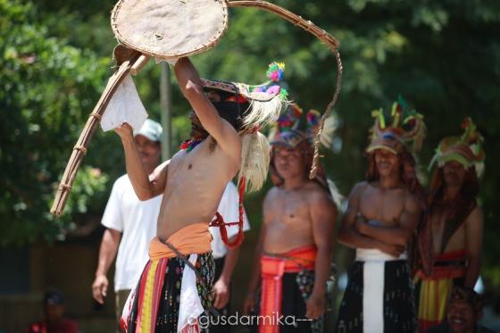 ------ Caci dance (1)