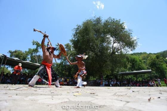 ------ Caci dance (4)